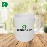 zameen.com mug